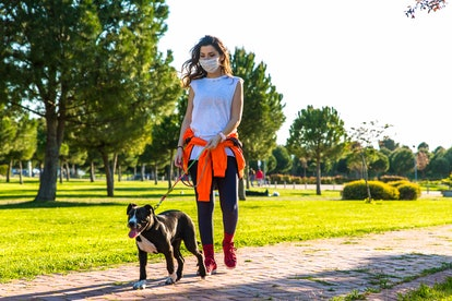 A person wearing a mask walks her dog in a public park. Make sure to wear your mask and maintain at ...