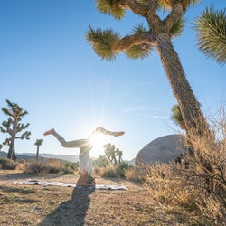 A woman does yoga in joshua tree national park. An expert explains what your brain is trying to tell you when you experience deja vu.