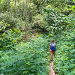 A woman goes for a hike. Being in nature can change your brain, science says