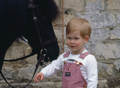 A collection of photos of royals with horses highlight a long history of the family's deep love for ...