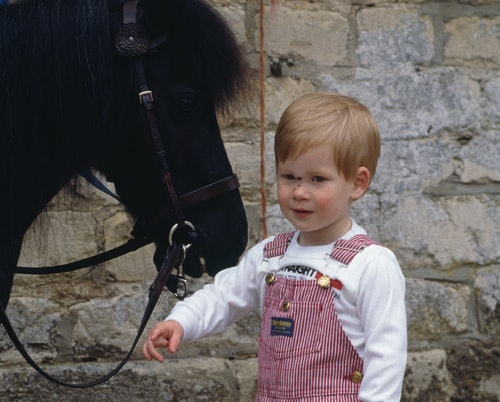 A collection of photos of royals with horses highlight a long history of the family's deep love for the animal.