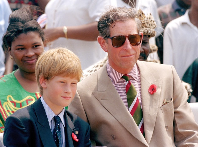Prince Charles bonds with Prince Harry in Africa.