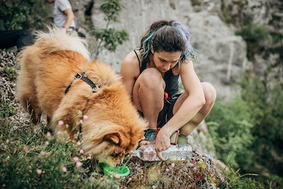 A person feeds her dog on a hiking trail. Hiking is a workout you can do with your dog.