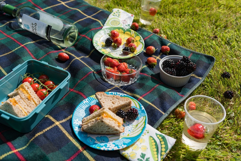 A summer picnic on a tartan blanket. How To Avoid Food Poisoning At Outdoor Barbecues & Picnics, According To Experts