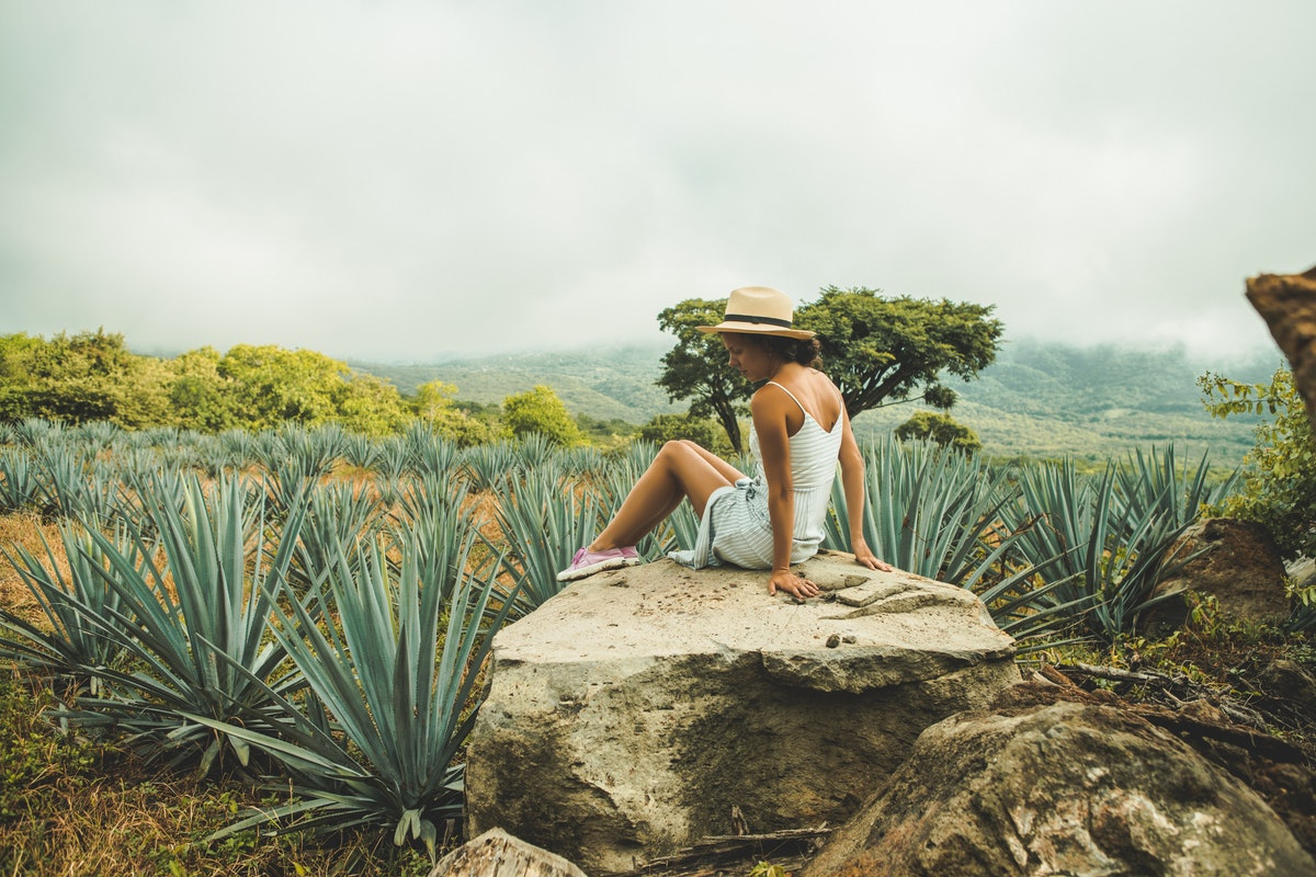 A young woman sits on a rock in the middle of a desert filled with succulents.