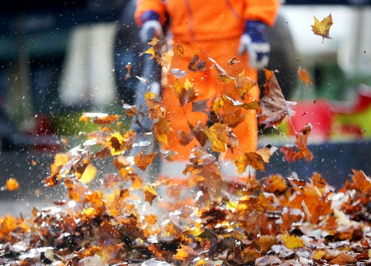 """In response to federal officers' frequent use of tear gas against demonstrators, dads have joined """"Wall of Moms"""" in protecting Portland protesters with leaf blowers."""
