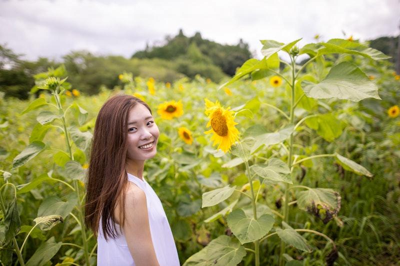 woman, flowers, field, sunflower