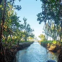 Cuba's river transformation came down to one key factor