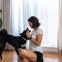 A woman pets her dog inside. If you're indoors, here's what you need to know about your risk of coronavirus.