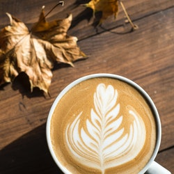 A latte sits next to fall leaves. Pumpkin spices' health benefits will leave you craving a latte.