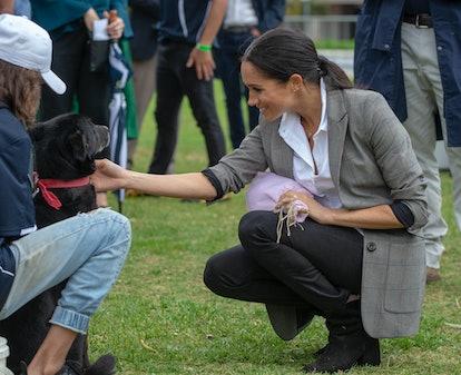 Meghan Markle greets a dog.