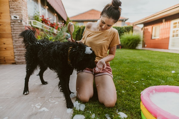 A woman gives her dog a bath in the backyard.