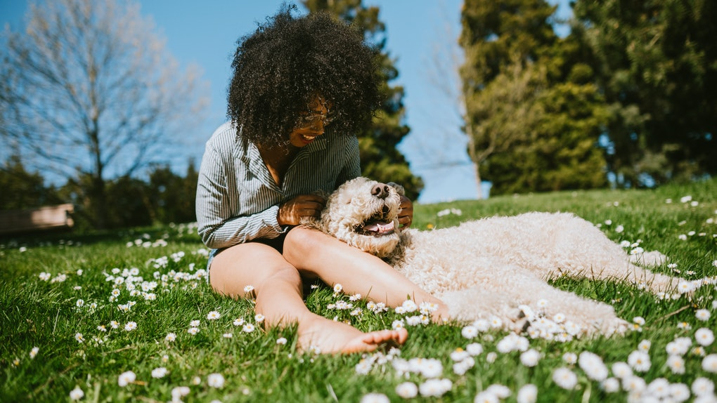 A young Black woman sits in the grass in her backyard with her fluffy dog on a sunny day.