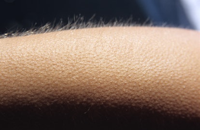 Goosebumps close up. Here's what happens in your brain when you get goosebumps.