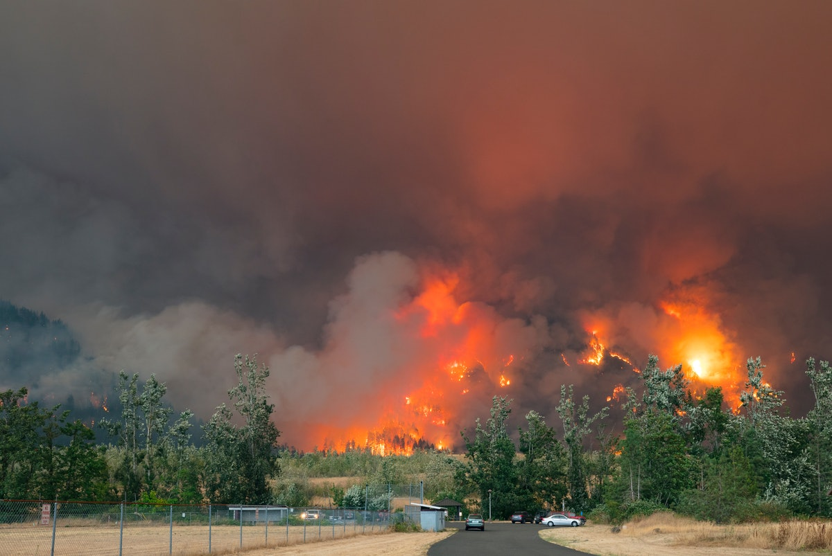 Here's how to help California, Oregon, and Washington wildfire victims as the fires continue.