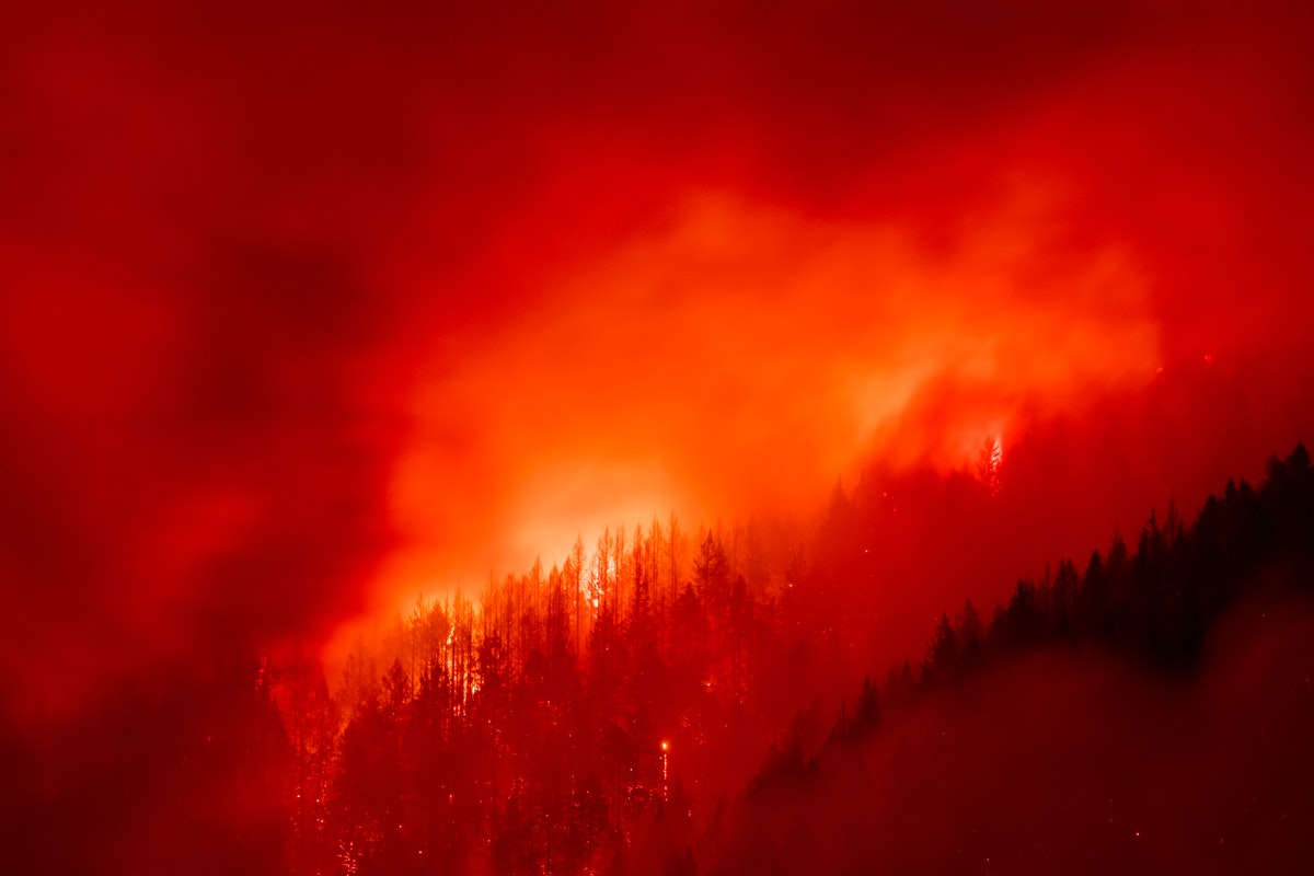 Here's how to help wildfire victims in California, Oregon, and Washington as the fires continue.