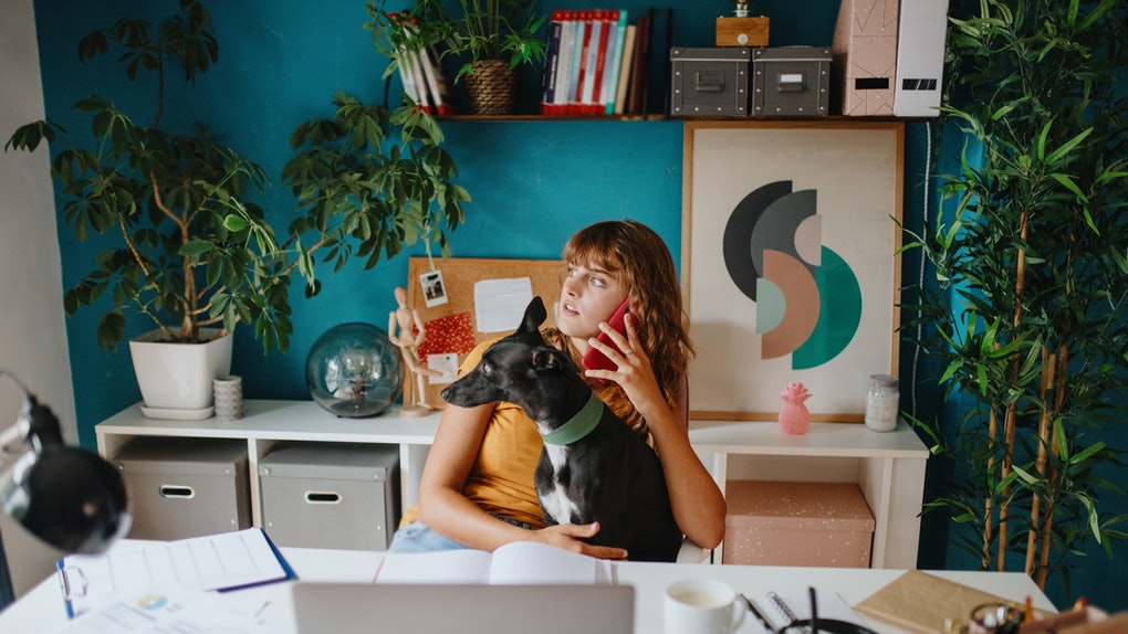 A young woman talks on the phone while sitting in her colorful home office with her dog.