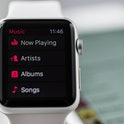 Apple Watch displaying music playback controls.
