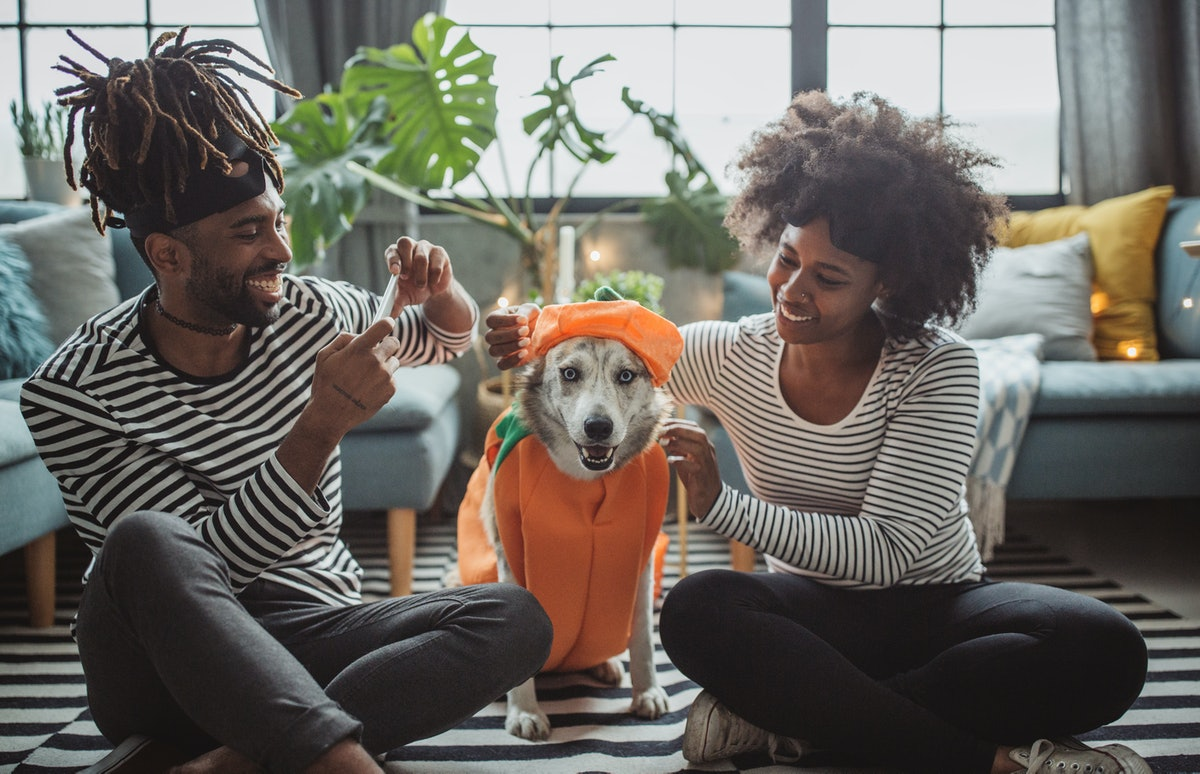 A couple puts a pumpkin costume on their dog for a Halloween photo together.