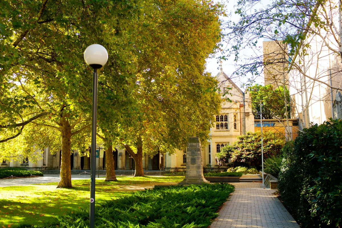 A college quad, without students, during autumn. Latinx campus organizers are getting out the vote d...