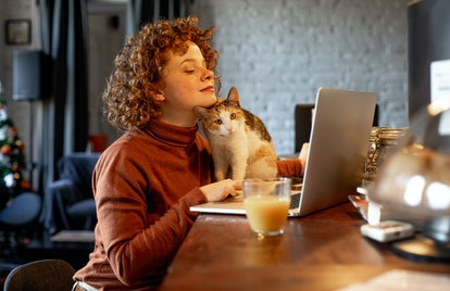 A young woman types on her laptop while hanging out with her cat.