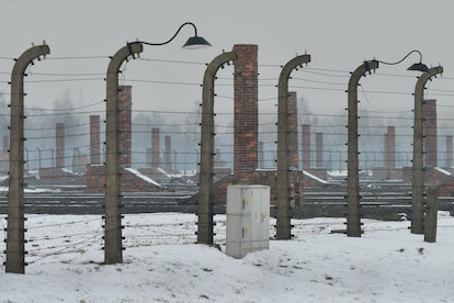 Barbed wire fences surround the Auschwitz death camp, now a museum