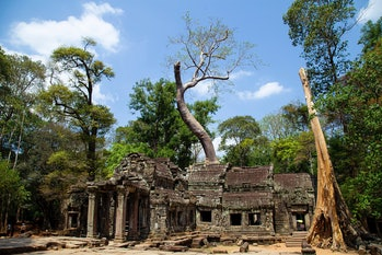 With green spaces like Angkor Wat mostly protected in Cambodia, any swap would have to get creative.
