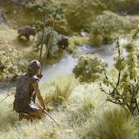 Neanderthal intelligence: Evidence of understanding math revealed