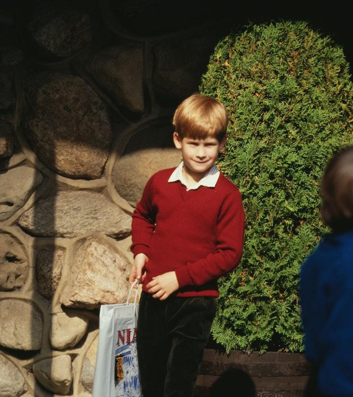 Prince Harry holding a souvenir bag at Niagara Falls, during a visit to Canada, 26th October 1991. (...