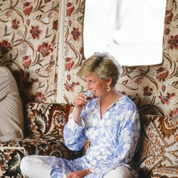Prince and Princess of Wales, Middle East Tour November 1986, picture shows Princess Diana enjoys an...