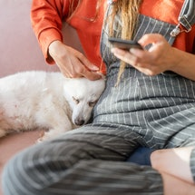 A woman is using a smart phone with her dog in the living room at home. Gen Z shares finsta name ide...