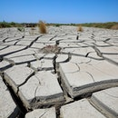 NEFTCHALA, AZERBAIJAN - JULY 05: Drylands areas around the area of the Kura River on July 5, 2020 in...