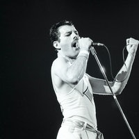 Sept. 7, 1982: Freddie Mercury and Queen perform at the Oakland Coliseum Arena in Oakland. (Photo by...