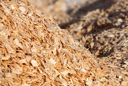 Wood chips in a yard outside a paper mill. Photographer: Andrey Rudakov/Bloomberg