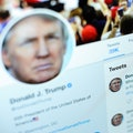 Angled picture of former President Trump's Twitter account.