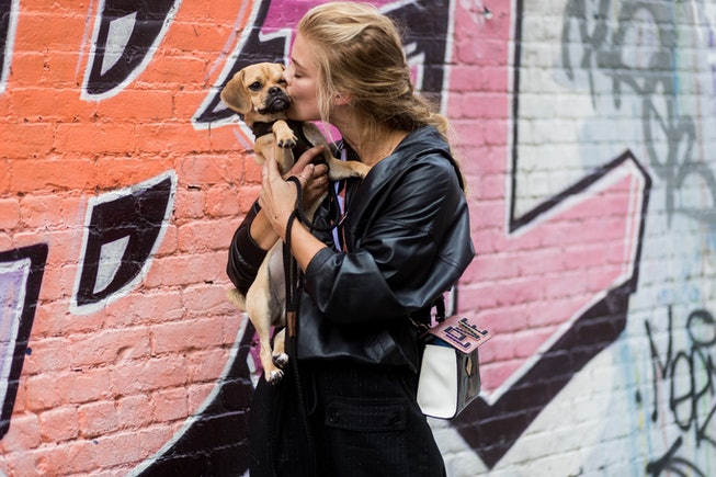 Model Nina Agdal with her dog seen in the streets of Manhattan outside Zadig & Voltaire during New York Fashion Week on September 11, 2017 in New York City.