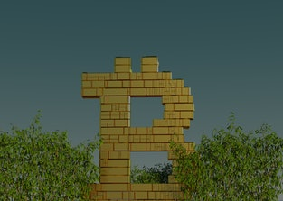 Gold bitcoin logo surrounded by bushes.