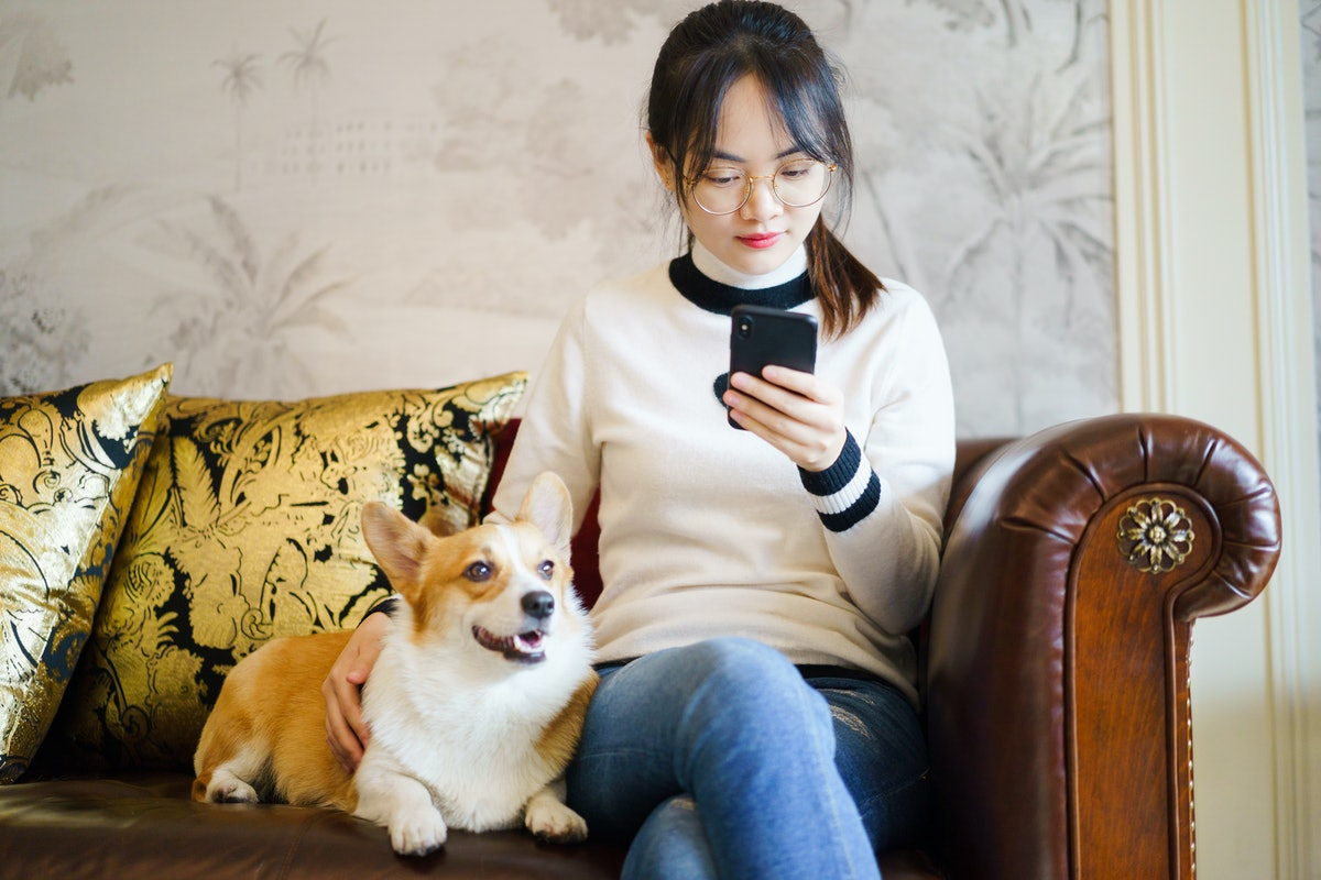 A woman sits on a leather couch with her corgi while scrolling through Instagram on Valentine's Day.