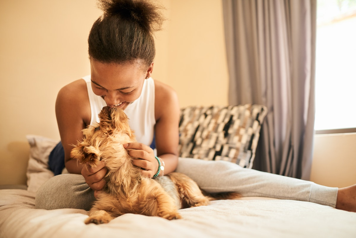 A happy woman kisses her pup on the bed.
