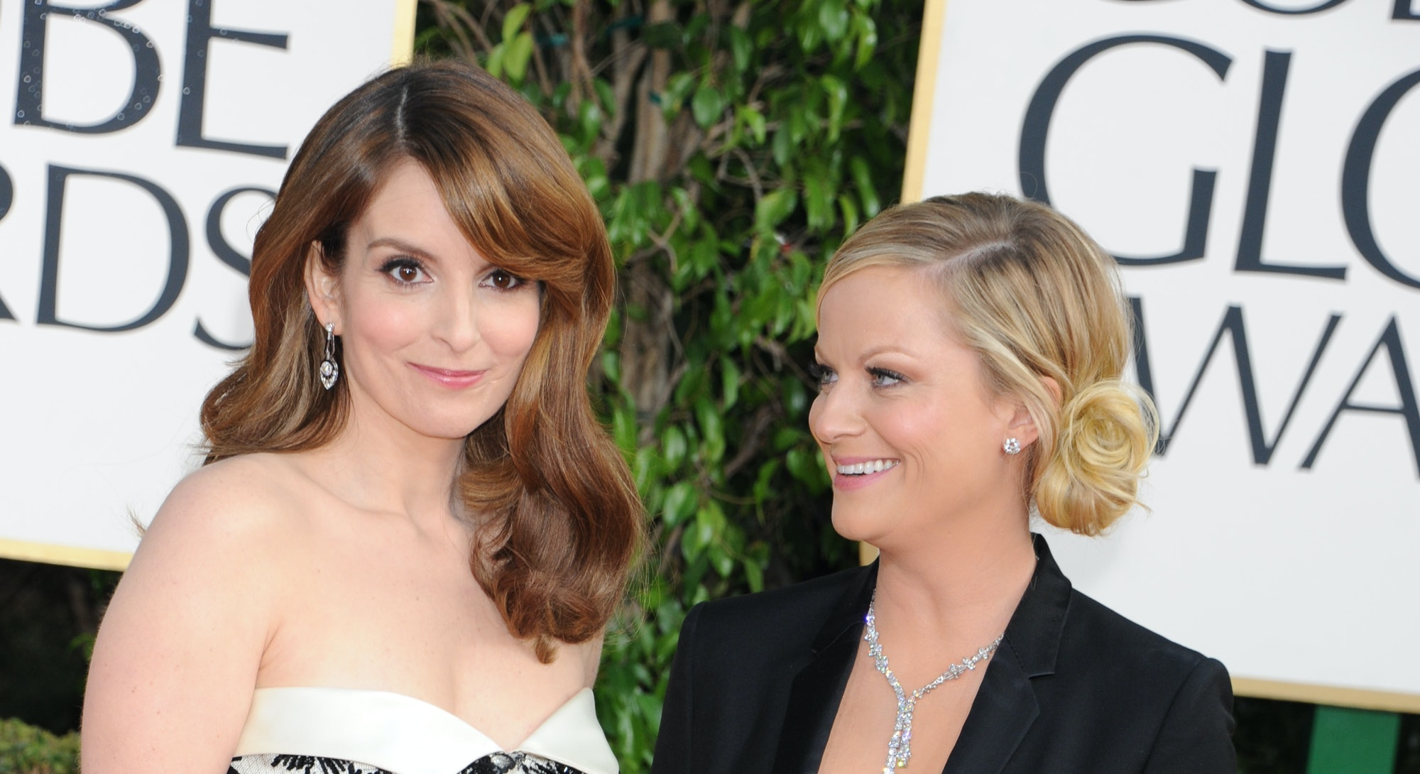 Amy Poehler and Tina Fey are comedians, writers, and friends known for their wit and feminism.
