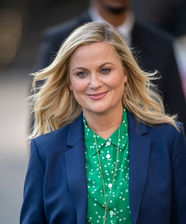"""Amy Poehler's book 'Yes, Please' was praised as """"self-damning and hopeful"""" by the Los Angeles Times."""