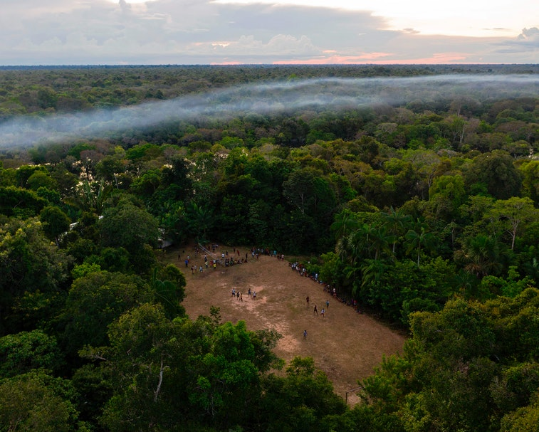 An aerial view of the Amazon rainforest is shown here at sunset.