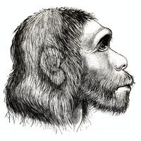 Inverse Daily: Neanderthals didn't leave big carbon footprints