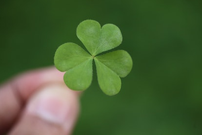 The shamrock as a symbol of Ireland and St. Patrick's Day also has a religious history.