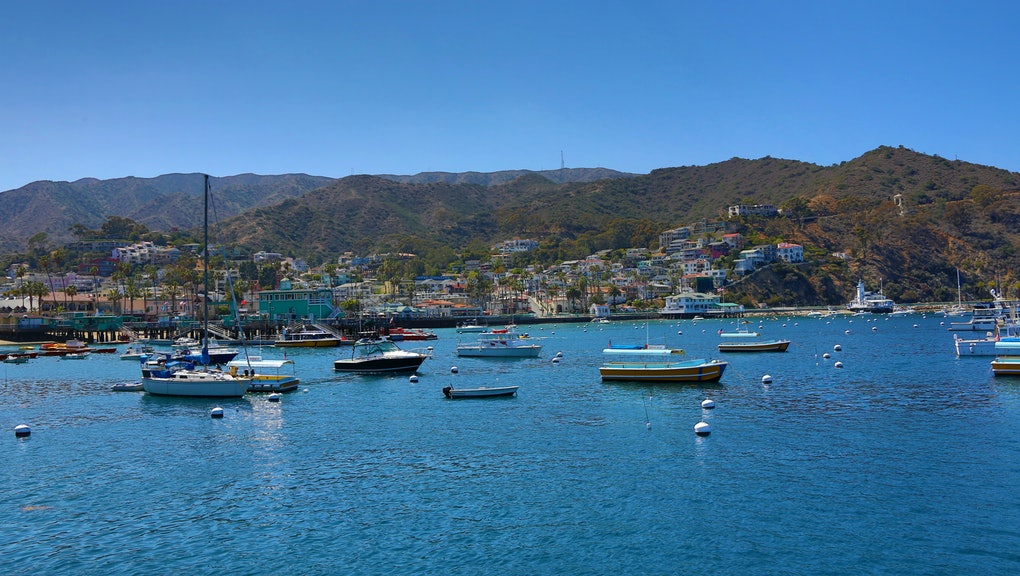 Avalon, California - April 14: A scenic view of moored boats in Avalon Bay with the city of Avalon as a backdrop in Avalon, California on April 14, 2015