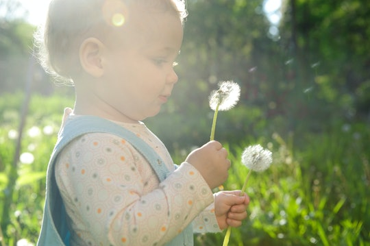 baby with a dandelion