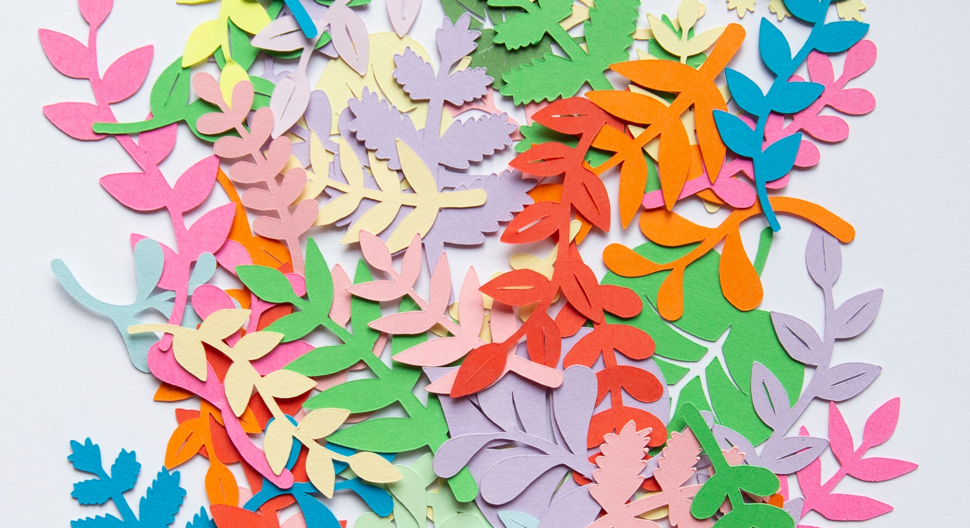 Colorful paper leafs shot from above.