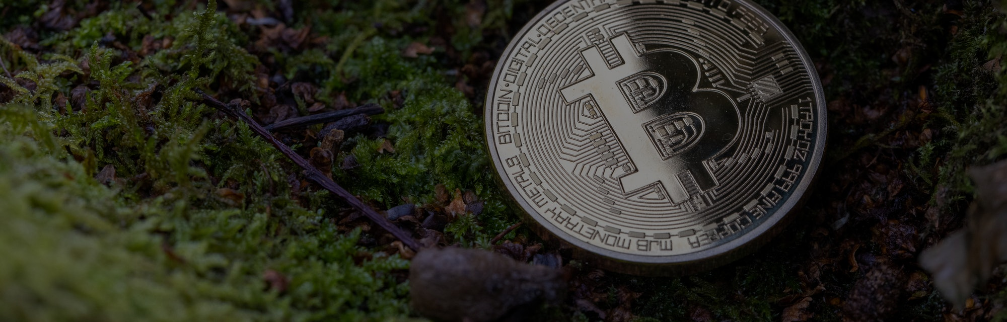 Environmental shots of a physical Bitcoin in 'green' spaces. An abstract conceptual shot of how cryp...