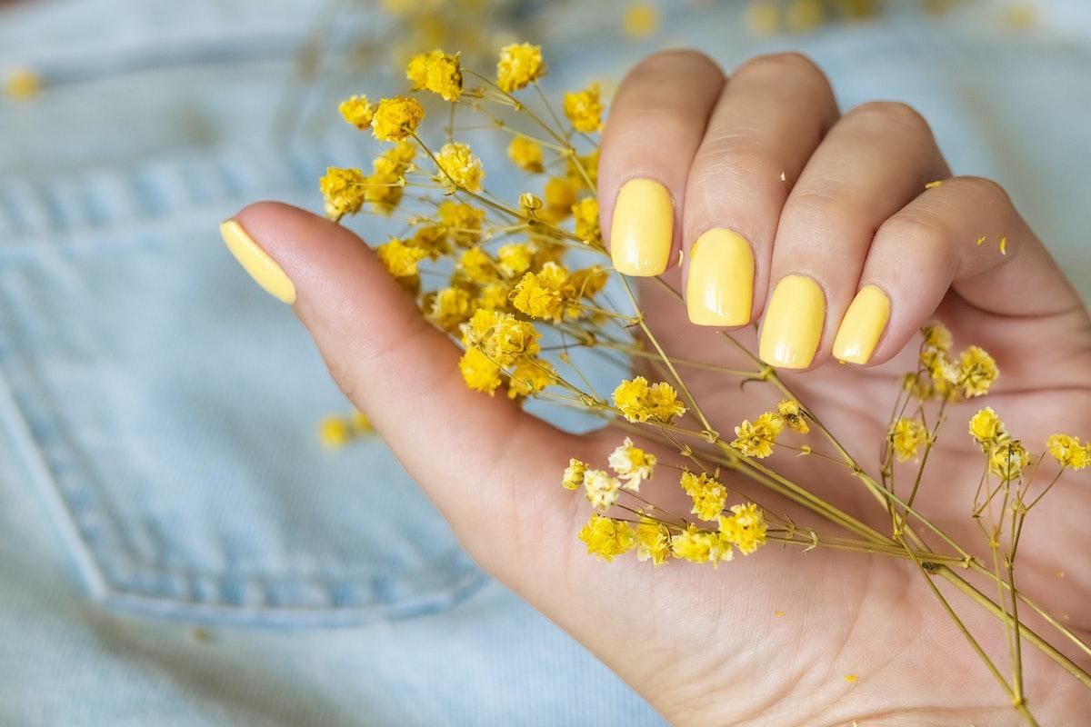 Beautiful woman's nails with beautiful manicure. studio shot