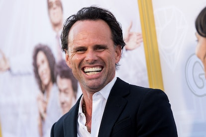 """HOLLYWOOD, CALIFORNIA - JULY 25: Walton Goggins attends the Los Angeles premiere of the new HBO series """"The Righteous Gemstones"""" at Paramount Studios on July 25, 2019 in Hollywood, California. (Photo by Emma McIntyre/FilmMagic)"""